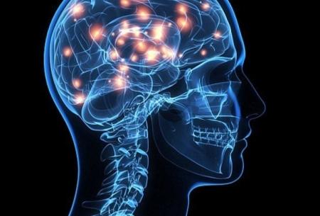 با این 6 کار مغزتان را شاداب نگه دارید