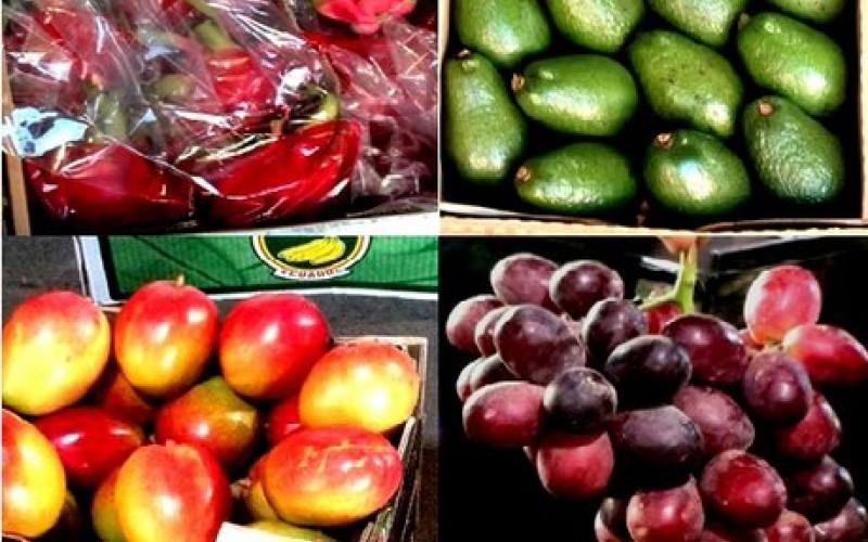 میوههای ممنوعه، مهمان ناخوانده واردات رسمی