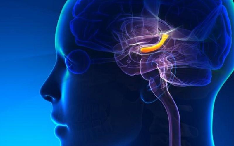 حافظه مغز با افسردگی ارتباط دارد