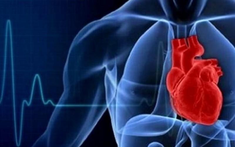 استرس موجب افزایش ضربان قلب می شود