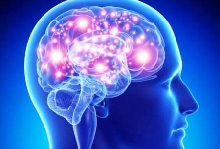 مغز فرد باهوش چه فرقی با کمهوش دارد؟