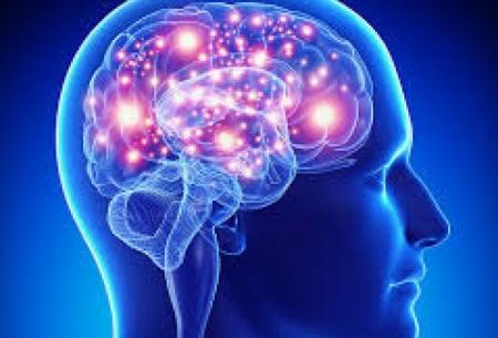 نقش ژن اختلال اسکیزوفرنی در رشد مغز