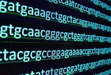 مخمری که قانون جهانی DNA را نقض میکند