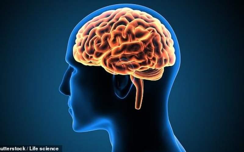 فریب دادن مغز تنها با یک آزمایش