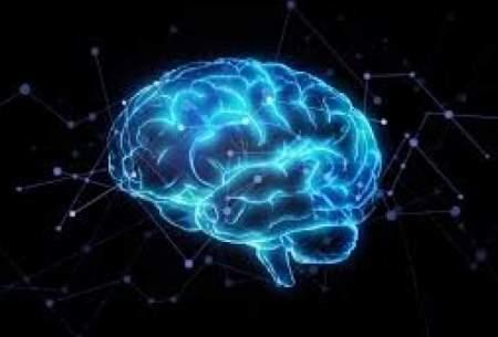 کشف نورونهای مسؤول تشخیص خطای انسانی