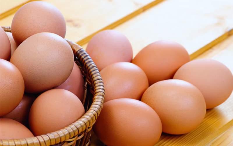 مرغ گران شد، تخم مرغ ارزان
