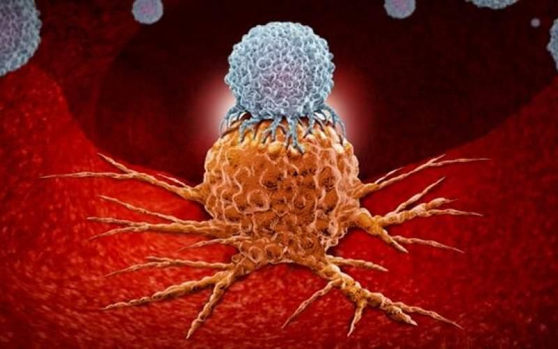 افزایش ایمنی بدن برابر سرطان با یک پروتئین