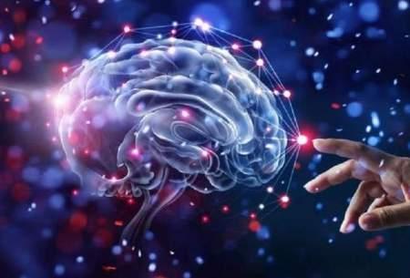 عملکرد معکوس مغز برای بازیابی خاطرات
