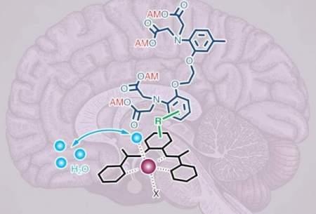 بررسی عمیق مغز با کمک یک حسگر جدید