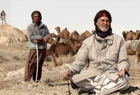 «روزگاری هامون» به جشنواره کانادایی رسید