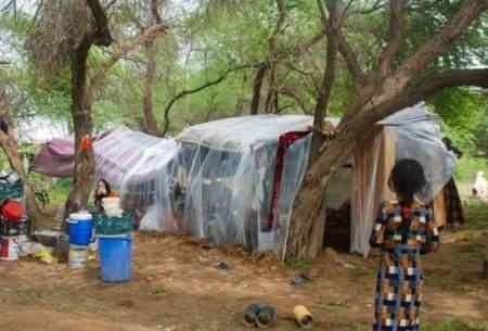 سیل زدگان خوزستانی در جنگل میخوابند