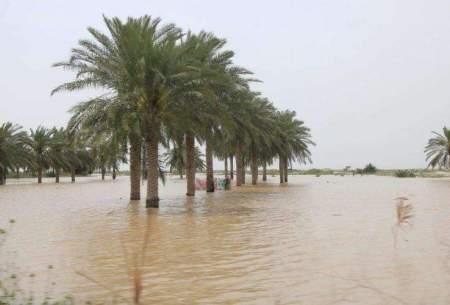 دهها روستای شادگان همچنان زیر آب هستند