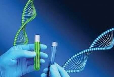 ثبت ازدواج بدون آزمایش ژنتیک ممنوع میشود