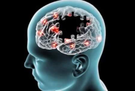 پروژه ساخت «مغز مصنوعی» کلید میخورد
