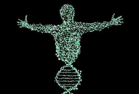 جهش DNA پیری را سرعت میدهد