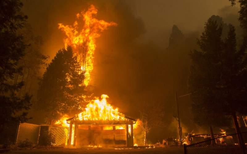مقابله با آتشسوزی جنگل به کمک پتو!