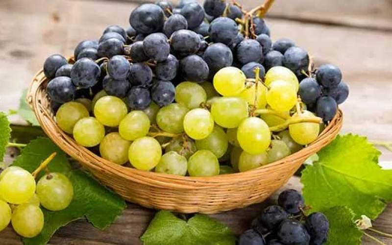 در خوردن این میوهها احتیاط کنید!