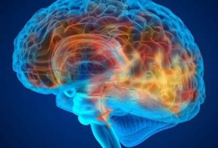 غلبه بر آلزایمر با تسکین التهاب مغز