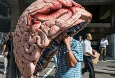 حقایق جذابی درباره مغز که شاید ندانید