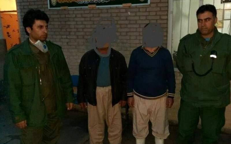 دستگیری عوامل کشتار خرس قهوهای
