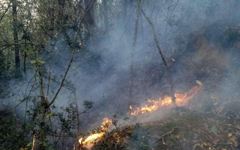همه کشور درگیر آتش سوزی در مراتع و جنگل ها