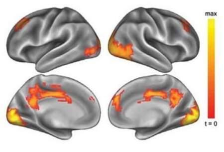 تنهایی چه بلایی بر سر مغز شما میآورد؟