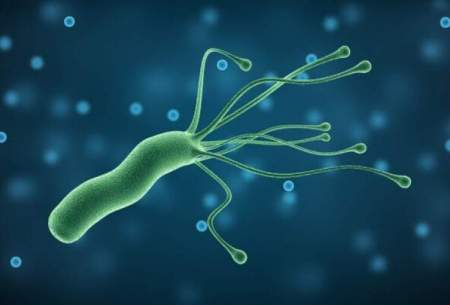 راهکاری برای خلاصی از باکتری آزار دهنده معده