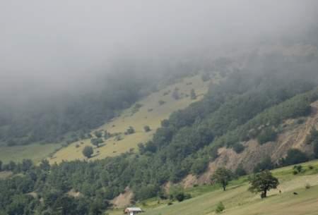 """خنکای مه در خورگام رودبار گیلان  <img src=""""https://cdn.baharnews.ir/images/picture_icon.gif"""" width=""""16"""" height=""""13"""" border=""""0"""" align=""""top"""">"""