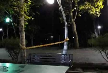 مرگ تلخ نوجوان ۱۴ساله در پارک لاله تهران