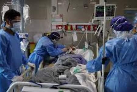 آمار فوتیهای بوشهر از مرز ۴۰۰ نفر گذشت