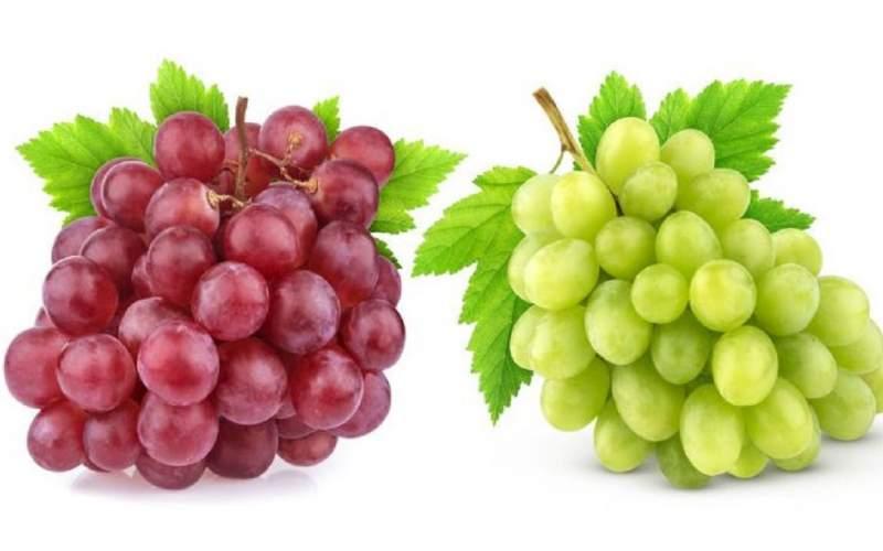 انگور را چه زمانی بخوریم؟
