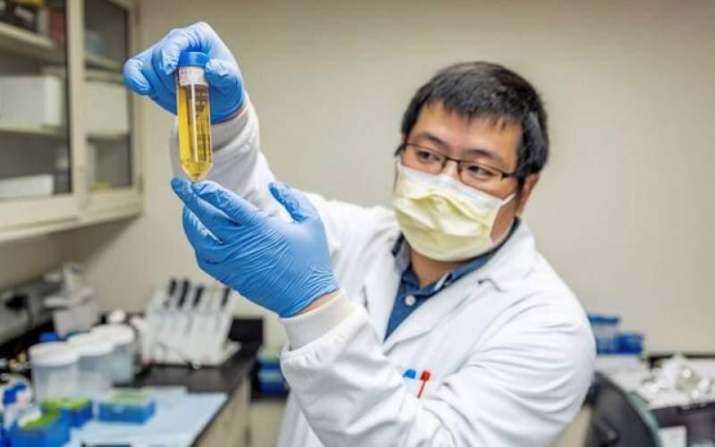 مولکول خنثی کننده کروناویروس  شناسایی شد
