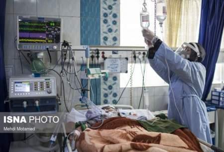 بستری شدن ۳۱۸کرونایی در بیمارستانهای قزوین