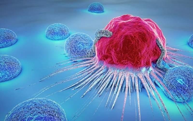 مادهای که ریسک سرطان سینه را افزایش میدهد