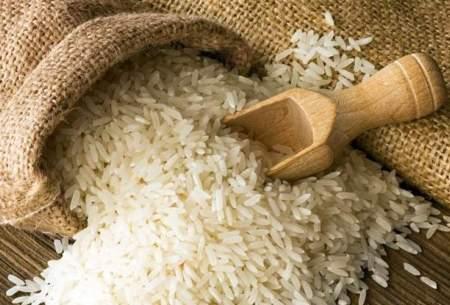 دولت، عامل ایجاد نوسان در بازار برنج