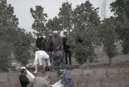فوتیهای کرونایی در بوشهر به ۵۵۷ نفر رسید