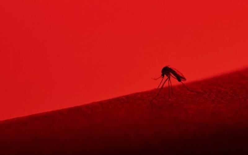 ویروسهایی که ترکیب آنها به سکته منجرمیشود