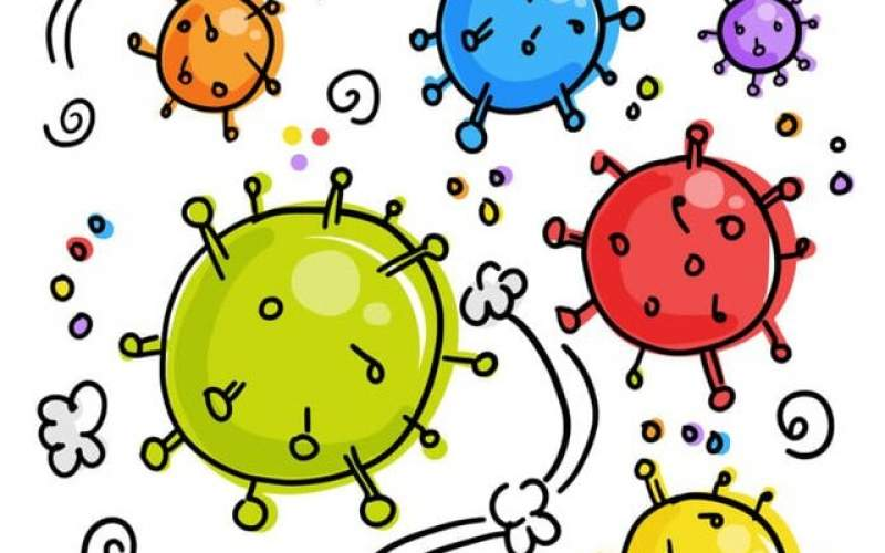 کشف یک اسید چرب مهم در دل کروناویروس