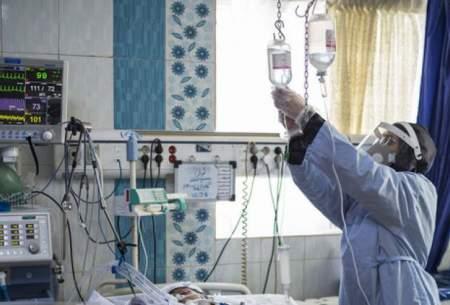 بستری شدن ۳۱۹کرونایی در بیمارستانهای قزوین