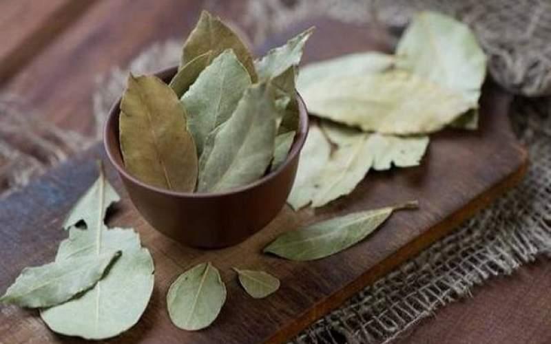 گیاهی که یکتنه سرماخوردگی را حریف است