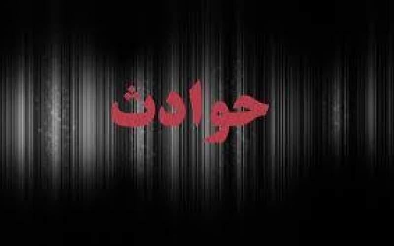 «شاه چاقوکش» قاتل شد