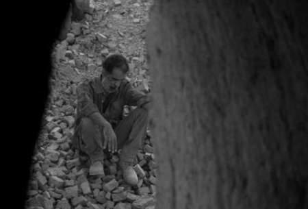 «دشت خاموش» در اسپانیا رقابت میکند