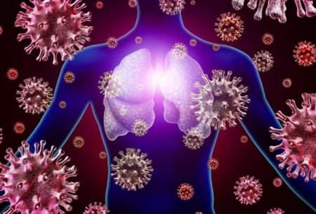 امکان ابتلای همزمان به کرونا و آنفلوانزا وجود دارد
