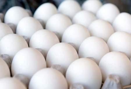 رشد 1400 درصدی قیمت تخممرغ در 10سال
