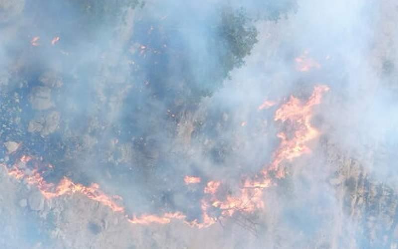 آتشسوزی جنگل های کوه نیر کهگیلویه مهار شد