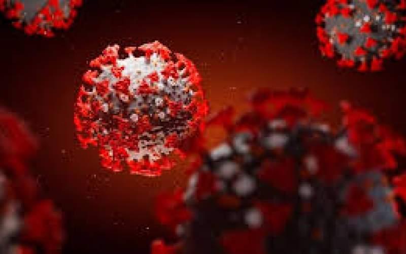 روند صعودی ویروس کرونا با افزایش سفرها