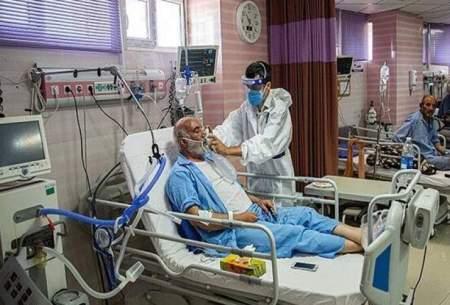 شناسایی ۴۱ بیمار جدید مبتلا به کرونا در زنجان