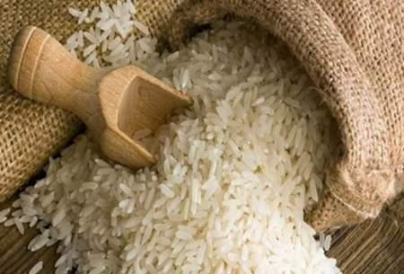 هزاران تن برنج در حال فاسد شدن