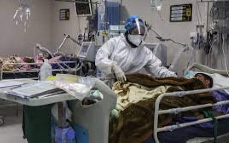 آمار نیمی از فوتیهای کرونا مربوط به تهران است