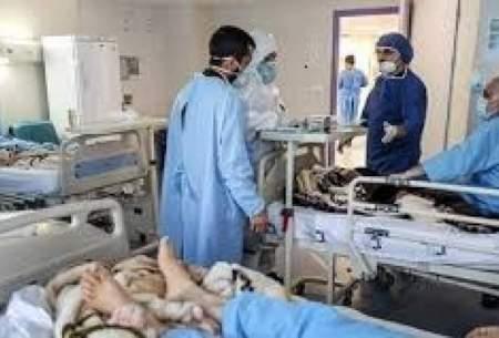 بستری شدن ۴۲۹ بیمار کرونایی در گیلان
